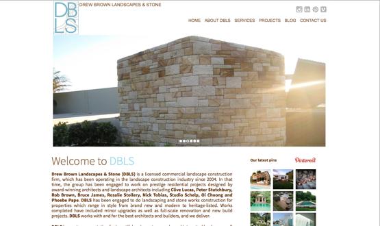 DBLS website design
